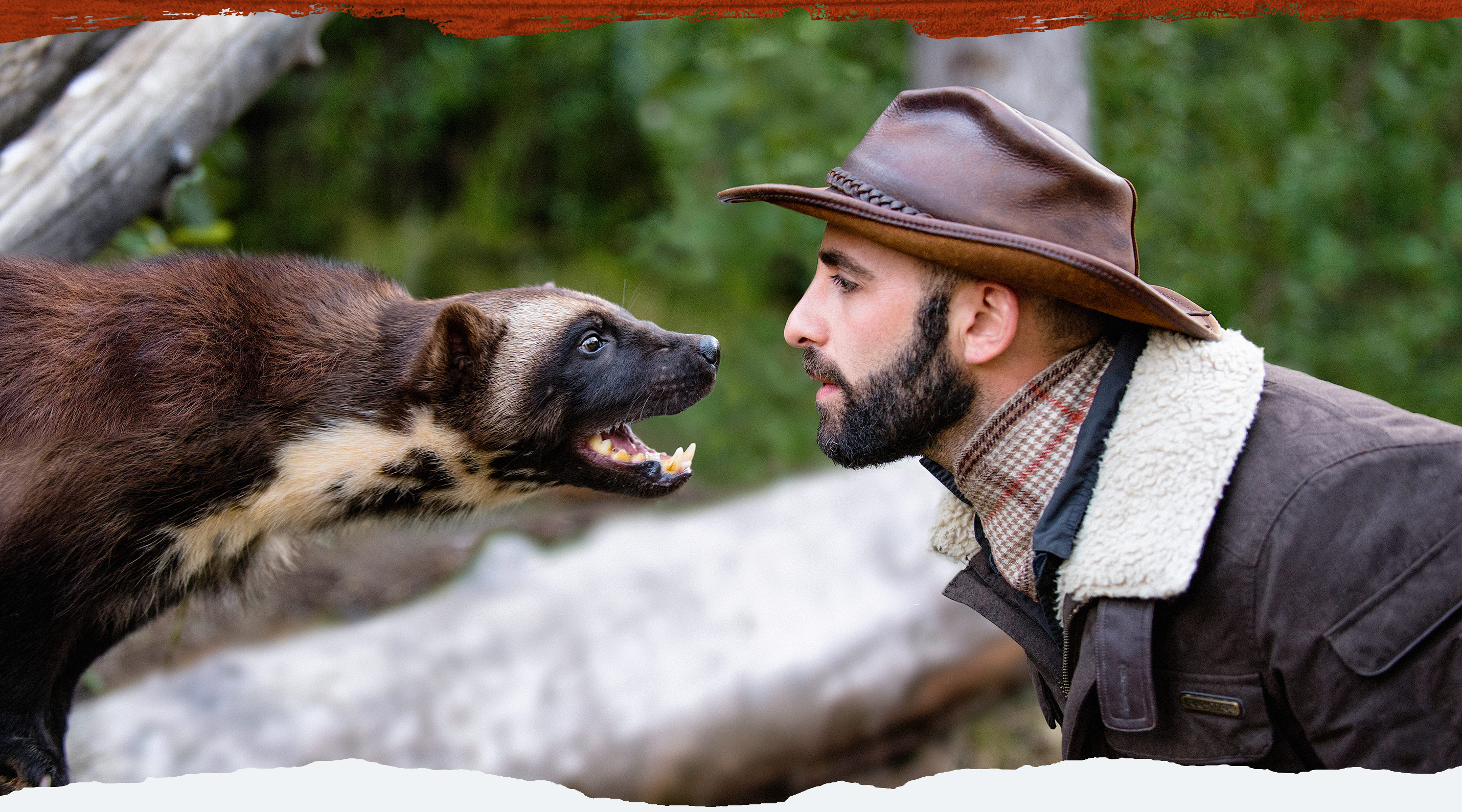 Brave Wilderness Coyote Peterson