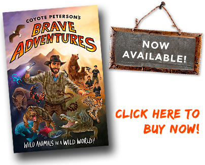 Coyote Peterson, Brave Adventures. Available now!