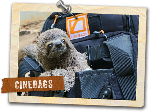 CineBags - Camera Bags Camera Backpacks and Production Bags
