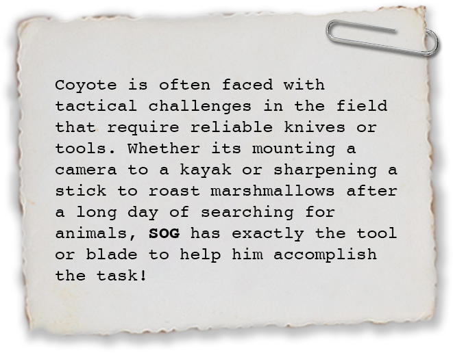 Coyote is often faced with tactical challenges in the field that require reliable knives or tools. Whether its mounting a camera to a kayak or sharpening a stick to roast marshmallows after a long day of searching for animals, SOG has exactly the tool or blade to help him accomplish the task!