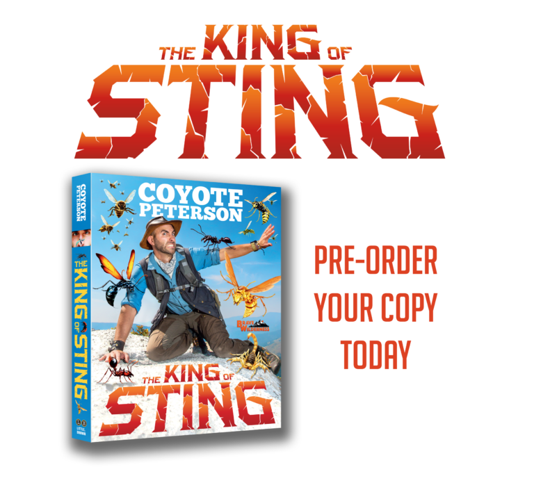 King of Sting. Pre-order your copy today!