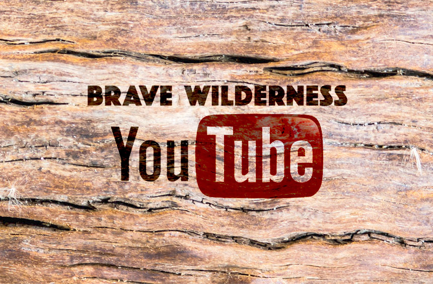 The Brave Wilderness YouTube Channel is your one stop connection to a wild world of adventure and amazing up close animal encounters!